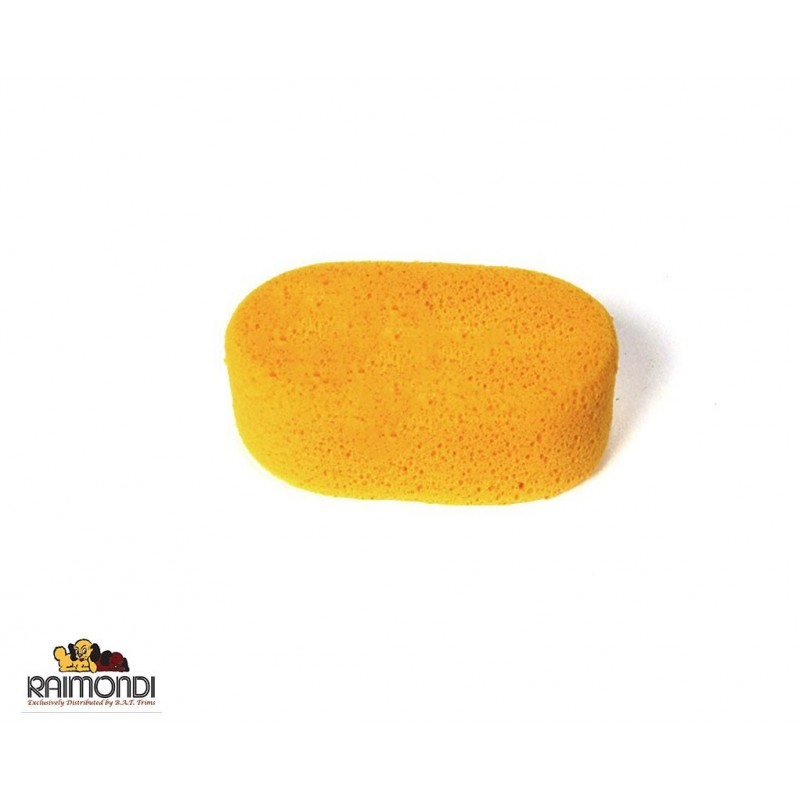 Raimondi -  spugna sweepex